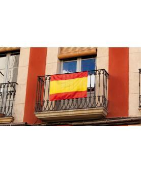 Bandera Caser - Imagen 2